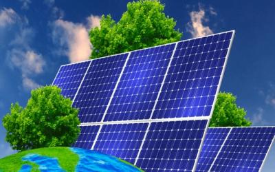Placas solares + árboles