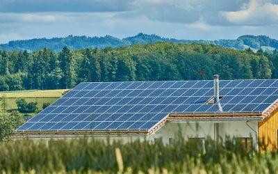 #PlacasSolares+Árboles Aficlima primera empresa en plantar árboles por placas solares